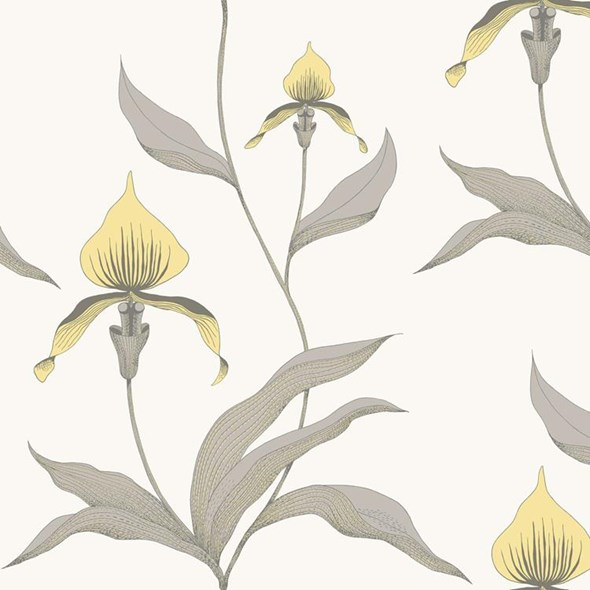 Cole & Son Orchid Tapet