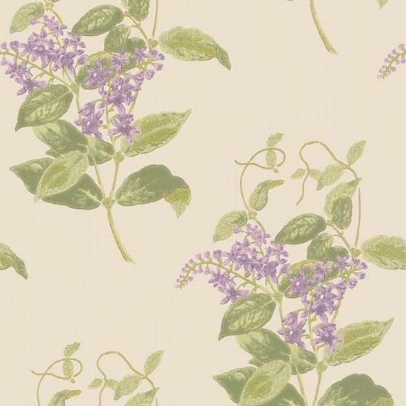 Cole & Son Madras Violet
