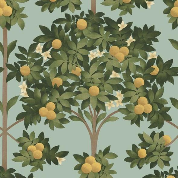 Cole & Son Orange Blossom Tapet