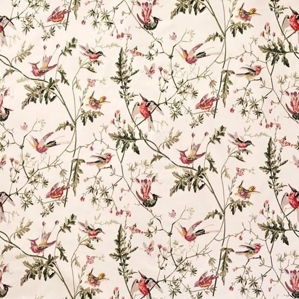 Cole & Son Hummingbirds, Classic Multi