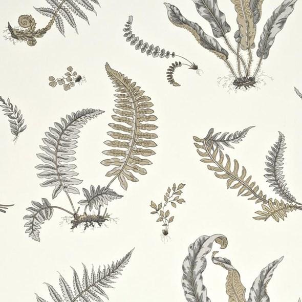 Baker Ferns Dove Grey/Silver