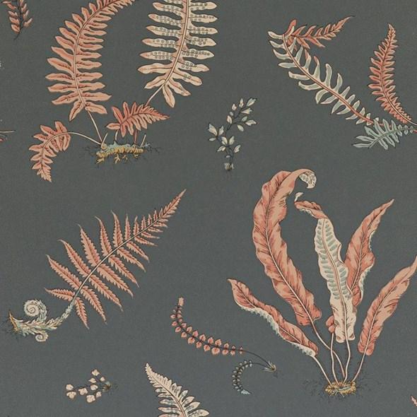 Baker Ferns, Coral /Charcoal