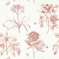 Sanderson Etching & Roses Tapet