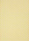 Thibaut Hillock Yellow