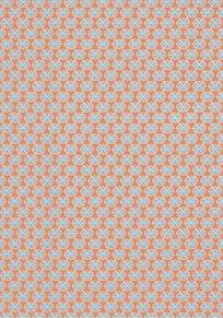 Thibaut Parada Orange Tapet