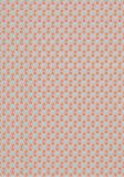 Thibaut Parada Orange