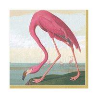 Audubon birds Servett