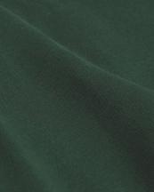 Colorful Standard Classic Organic Hood Emerald Green
