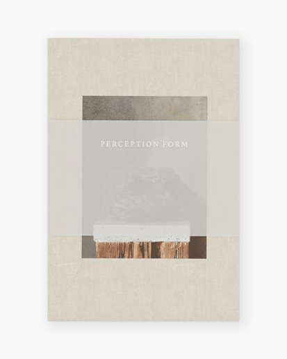 New Mags Perception Form Book