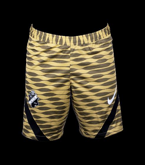 Nike shorts summer edition 21
