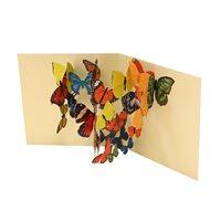 Kort Pop-upkort Fjärilar