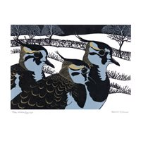 Winter Lapwings
