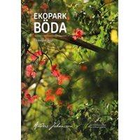 Ekopark Böda - en magisk skog (Johansson)