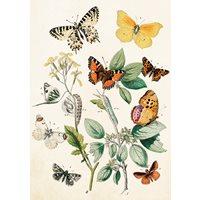 Dubbelt Kort Fjärilar Vintage