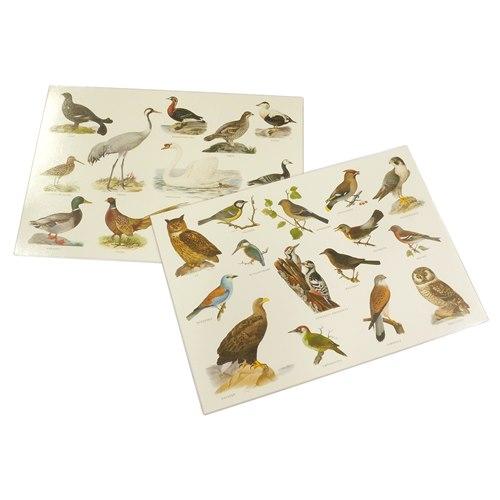 Bordstablett Fåglar