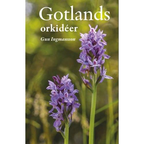 Gotlands orkidéer (Ingmansson)