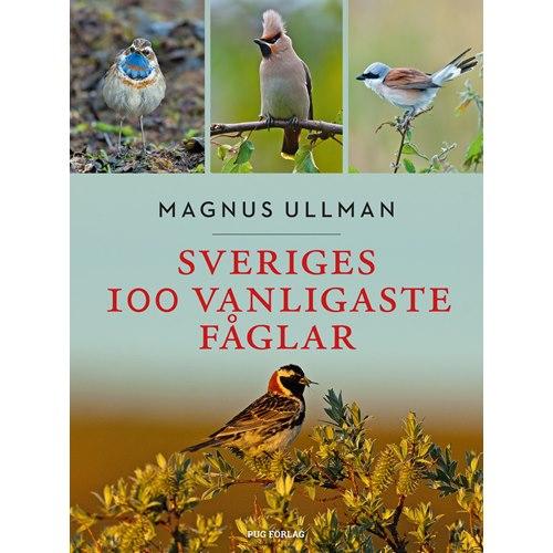 Sveriges 100 vanligaste fåglar (Ullman)