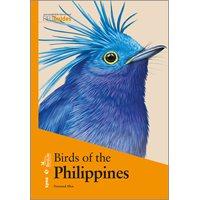 Birds of the Philippines (Allen)