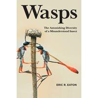 Wasps The Astonishing Diversity of a Misunderstood Insect