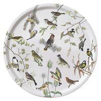 Bricka Trädgårdsfåglar