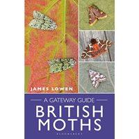 British Moths A Gateway Guide