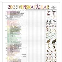 Poster 202 Birds in Sweden