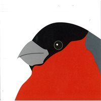 Double GiftCard Bullfinch