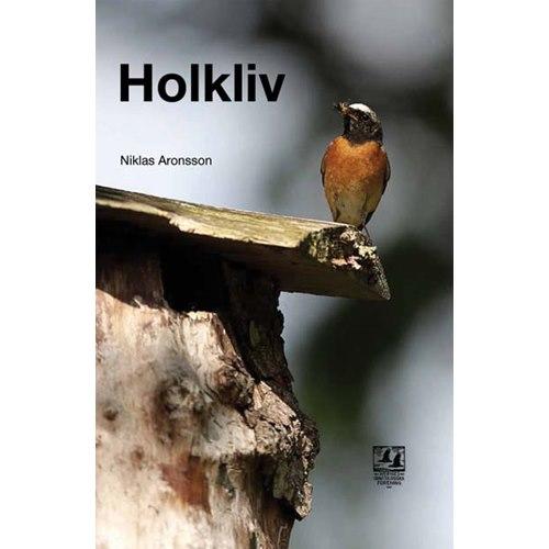 Holkliv  (Aronsson)