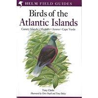 Field Guide Birds of the Atlantic Islands (Clarke...)