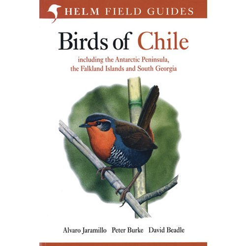 Birds of Chile (Jaramillo, Burke, Beadle)