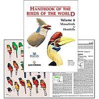 Handbook of the Birds of the World. HBW vol 6 (del Hoyo...)