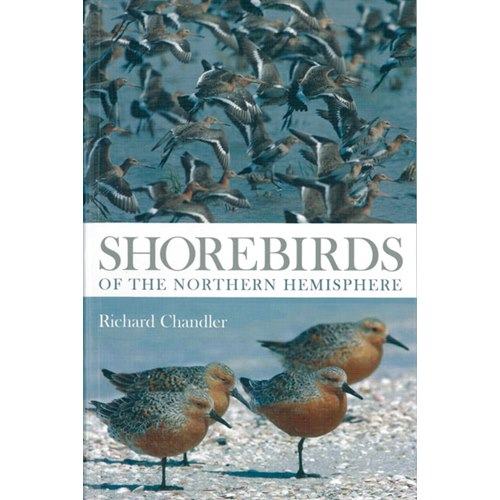 Shorebirds of the Northern Hemisphere (Chandler)