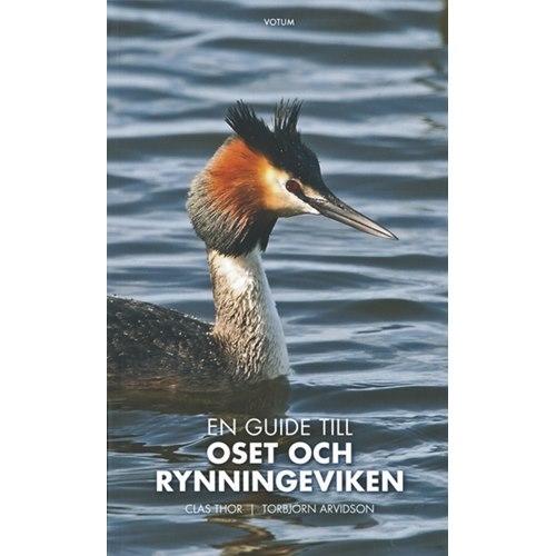 Oset och Rynningeviken (Thor & Arvidsson)