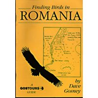 Finding birds in Romania. Gostours guides.