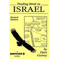 Finding birds in Israel. Gostours guides.