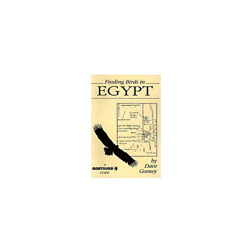 Finding birds in Egypt. Gostours guides.
