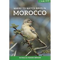 Where to watch birds in Morocco (Bergier & Bergier)