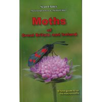 Moths of Great Britain and Ireland (Clancy, Top-Jensen..)