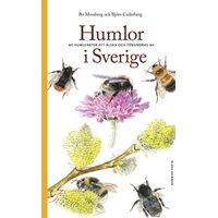 Humlor i Sverige (Mossberg & Cederberg)