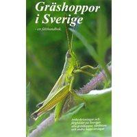 Gräshoppor i Sverige - en fälthandbok