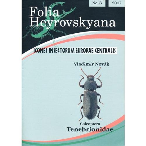 Tenebrionidae (Darkling Beetles) FHB 8