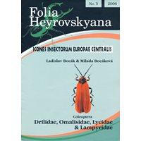Drilidae, Omalisidae, Lycidae & Lampyridae. FHB 5