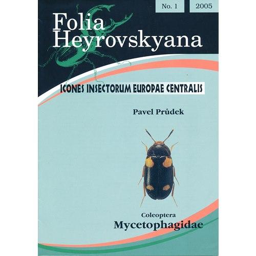 Mycetophagidae (svampbaggar) FHB 1