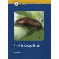British Scraptiidae (Levey)