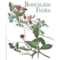Bohusläns Flora (Blomgren & Falk)