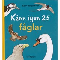 Känn igen 25 fåglar (Bergenholtz)