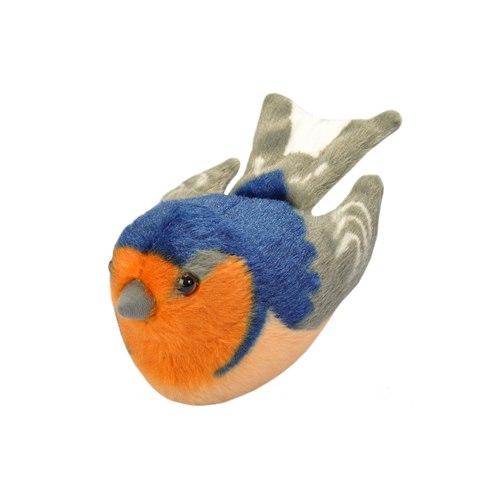 Pipfågel Ladusvala