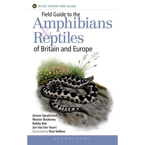 Amphibians and Reptiles of Britain and Europe (Speybroeck, B