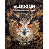 Eldögon - möten med Sveriges ugglor (Olofsson)
