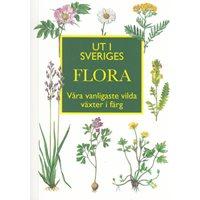 Ut i Sveriges Flora (Nordin)
